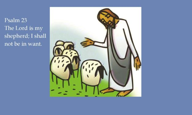 The Bulletin for the Fourth Sunday of Easter – Sunday May 7, 2017