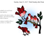 Sunday, June 25, 2017 Third Sunday after Pentecost