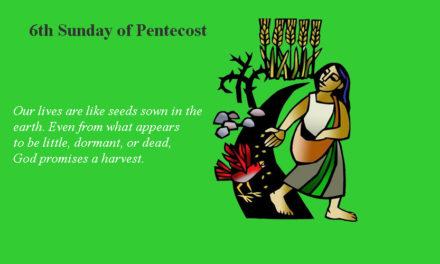 July 16, 2017 – 6th Sunday of Pentecost